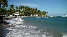 Apo Island, Dumaguete, Philippines - YouTube
