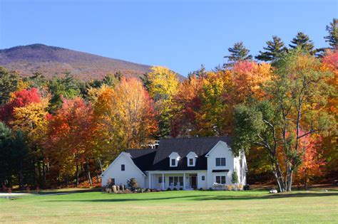 5 Surprising Benefits Of Country Living, According To