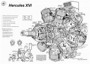 Flathead Engine Diagram Rolls Royce Merlin Supercharger Cutaway Horsepower  U2013 My Wiring Diagram