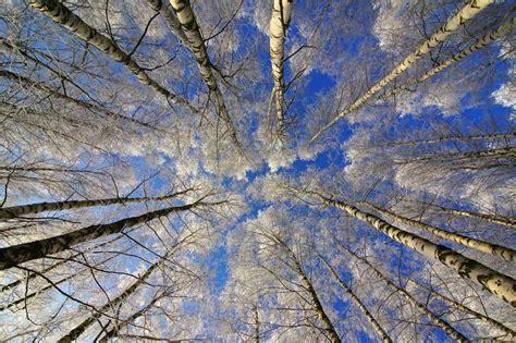 Latvijā sācies meteoroloģiskais pavasaris - rudeni ...