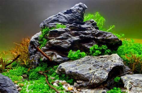 aquascaping with rocks how to get your aquascape right time practical