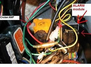 File Name  Aftermarket Cruise Control Wiring Diagram