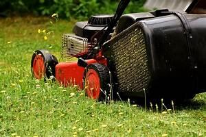 Aerifizierer Selber Bauen : aerating your lawn and lawn edging over the winter season ~ Lizthompson.info Haus und Dekorationen