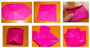 Diagram Flower Fold Origami
