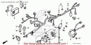 Honda Nx650 Dominator 1992 England    Kph Wire Harness