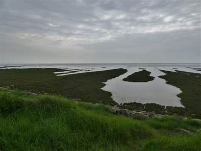 Flickr Newport Wetlands Wales South
