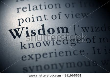 wisdom stock images royalty  images vectors