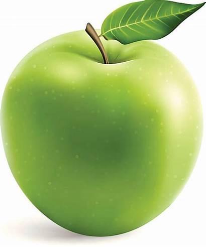 Apple Vector Smith Clip Granny Illustrations Fresh