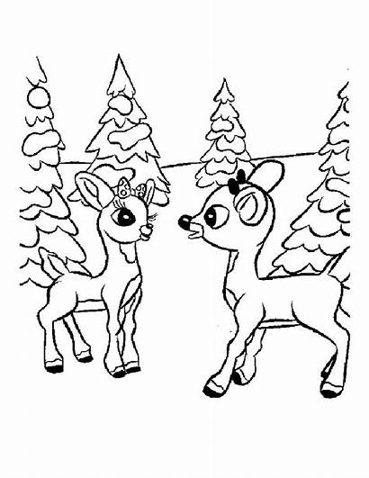 Rudolph Coloring Pages Reindeer Christmas Nosed Printable