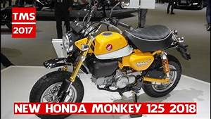 Honda Monkey 2018 : new 2018 honda monkey 125 honda monkey 125 at the 2017 tokyo motor show youtube ~ Medecine-chirurgie-esthetiques.com Avis de Voitures