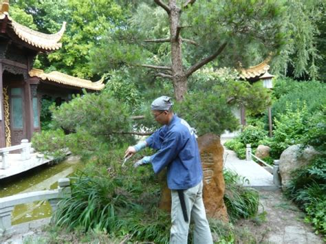 Japanischer Garten Anlegen Und Pflegen by Japanischen Garten Gestalten Japanischen Garten Anlegen