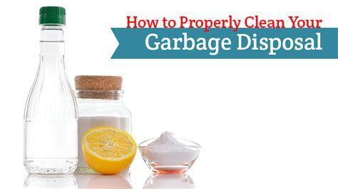how to clean sink disposal how to properly clean your garbage disposal