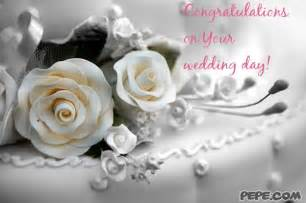 wedding day congratulations on your wedding day greeting card on pepe