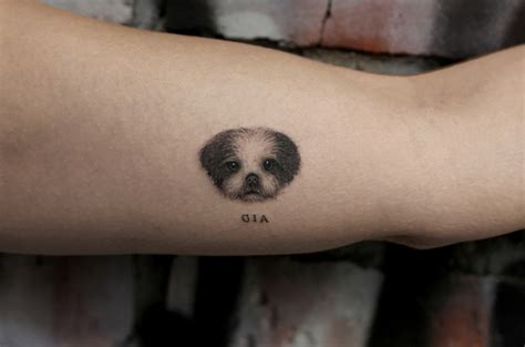 adorable pet tattoos  tickle  inked