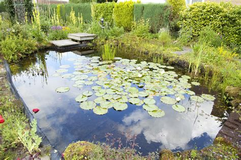 inspiring exles and pond ideas for your own pond velda