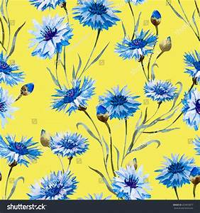 Watercolor Floral Pattern Blue Flower Cornflower Stock ...