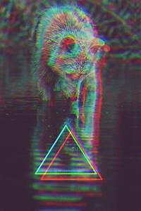 triangle hipster on Tumblr