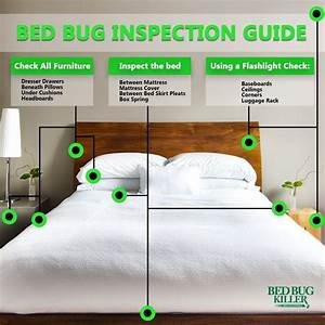 how to check for bed bugs in hotel rooms and other public With bedbug check