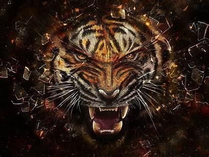 Parede Papel Tigre 1920 Baixar