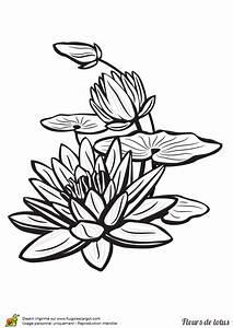 Dessin Fleurs De Lotus : coloriage fleur de lotus sur l eau sur ~ Dode.kayakingforconservation.com Idées de Décoration