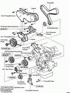 V7 Engine Diagram Timing Belt Di 2020