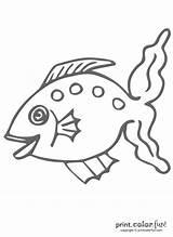 Fish Funny Coloring Fun Printcolorfun sketch template