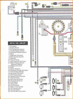 Lowe Pontoon Boat Wiring Diagram 41117 Ciboperlamenteblog It