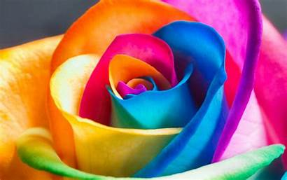Colorful 2960 1850 Wallpapers