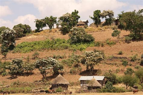 Traditional rural houses, Ethiopia | Traditional rural ...