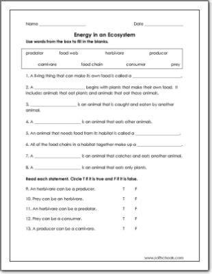 energy   ecosystem worksheet kids worksheets