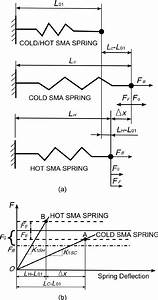 A  Spring Model And  B  Force U2013deflection Diagram Of The