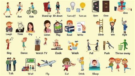 introduction  action verbs education