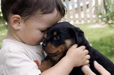 These 30 Adorable Pictures Of Babies With Puppies Will