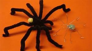 Halloween Sachen Basteln : halloween spinne f r die deko basteln deko ideen mit flora shop youtube ~ Whattoseeinmadrid.com Haus und Dekorationen