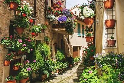 Garden French Elegant Vegetable Gardens Morningchores Plants