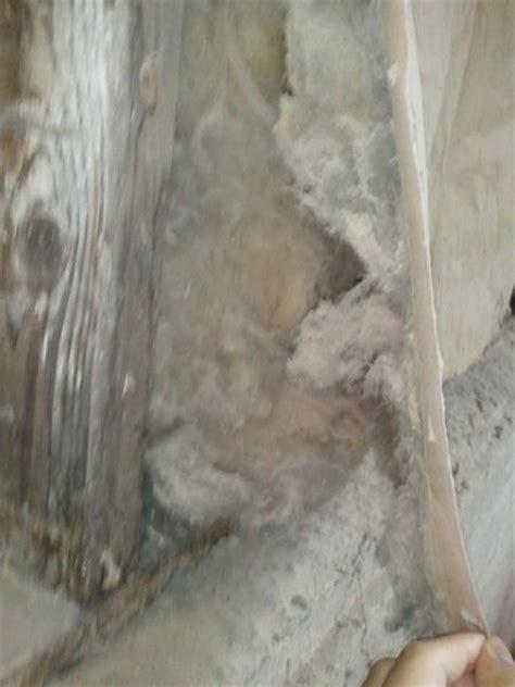 insulation identification    asbestos