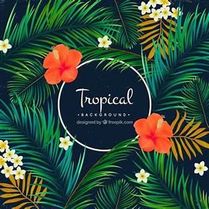 Tropical, fundo, palma, árvores, flores Baixar vetores grátis