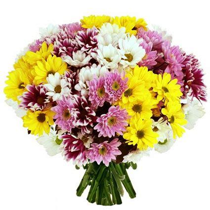Ziedu piegāde | Krizantēmu pušķis: Puķu kvartets
