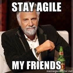 Agile Meme - 8 best agile images on pinterest memes humor funny memes and ha ha