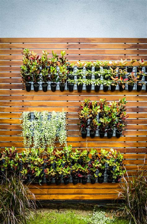 Can You Grow In A Vertical Garden by Vertical Gardens Are The Key To Self Sufficiency In The City