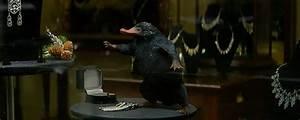 Wo Werden Xora Möbel Hergestellt : phantastische tierwesen und wo sie zu finden sind j k rowling spricht ber die fan favoriten ~ Bigdaddyawards.com Haus und Dekorationen