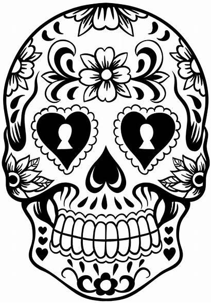 Skull Sugar Wreath Loved Sure Check