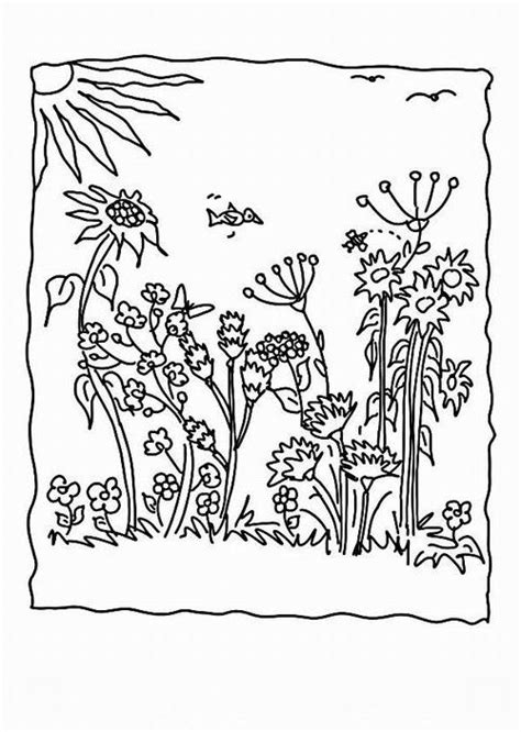 ausmalbilder malvorlagen blumenwiese kostenlos zum