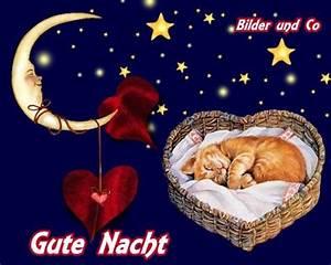 Lustige Gute Nacht Sprüche Bilder : gute nacht bild 25891 gbpicsonline ~ Frokenaadalensverden.com Haus und Dekorationen