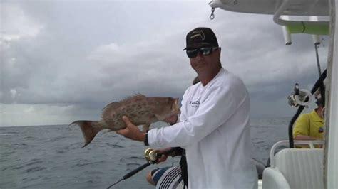 mitchell kitty grouper reel animals fishing