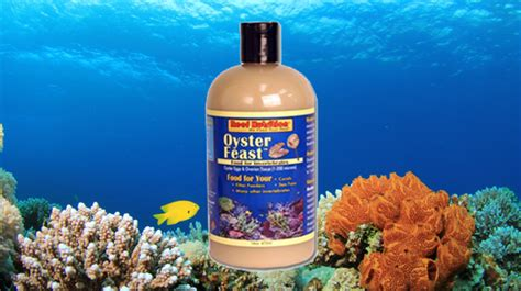 buy oyster feast  coral food  sale vivid
