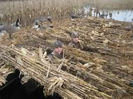 Best Homemade Duck Blind Ideas And Images On Bing Find What You