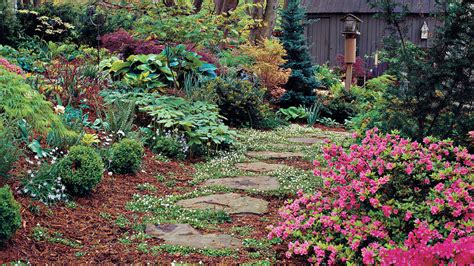 Cottage Gardening For Everyone-southern Living