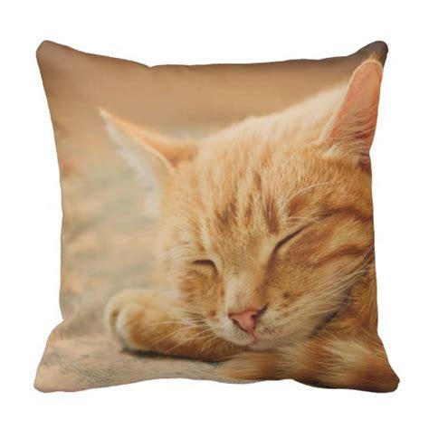 cat pillow sleeping orange tabby cat pillow