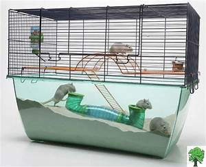 Awesome gerbil enclosure! | For the Love of PETS ...